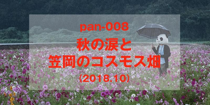 秋の涙と笠岡のコスモス畑