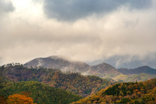 篠山城から見えた景色