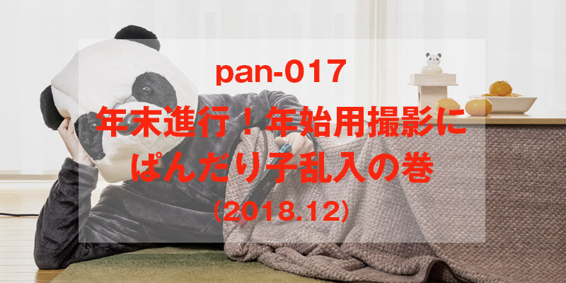 年末進行ぱんだり子