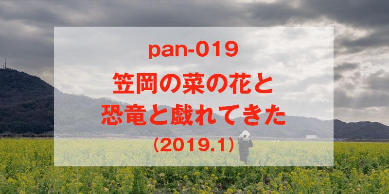 ぱんだりろぐNo.19