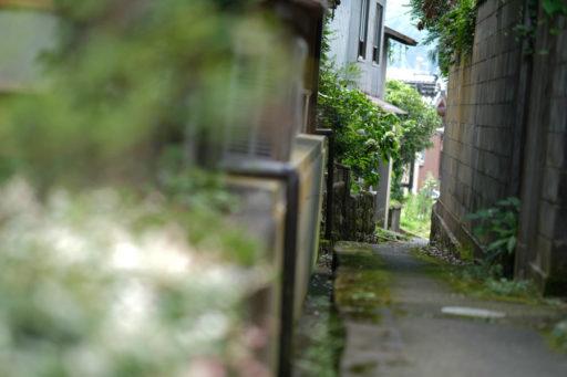鳥取石谷家周辺